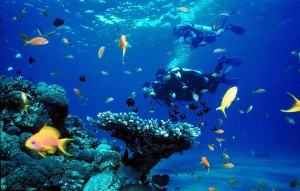 Lakshadwee top 10 destinations in india
