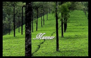 Munnar best holiday destinations of india