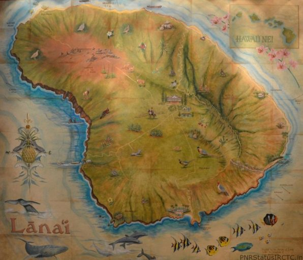 Lanai comma-shaped island