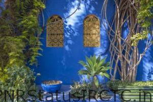 Tour around Majorelle Gardens for rare and colorful plants